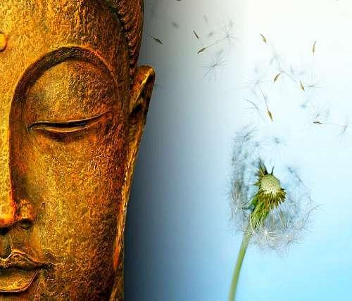 Understanding the Principle of Impermanence