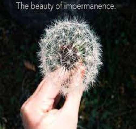 Understanding Impermanence